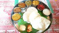 ティラガのミールス South indian lunch at Thilaga - latina diary blog