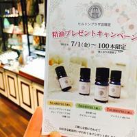 【ヒルトンプラザ店】キャンペーンのお知らせ - ライブラナチュテラピーの aroma な話