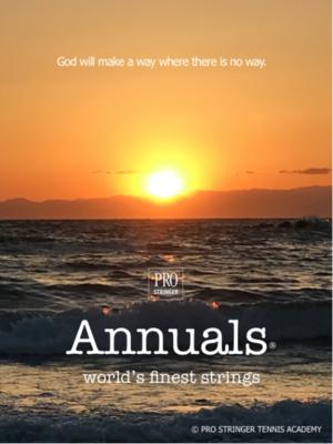 ANNUALSの感想#11 - プロストリンガー公式ブログ