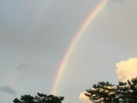 虹にお願い - はまあやのくらし