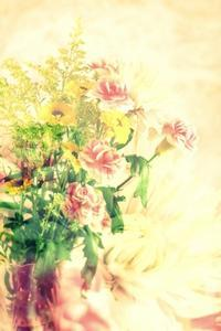 合成の花束撮影。 - 想い出