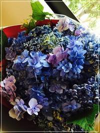 お誕生日おめでとう♥48本のバラの花束と10周年 - From sugar box studio