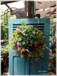 Aprenda, aprenda - Garden Diary