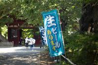 本土寺 -紫陽花- - 光の贈りもの