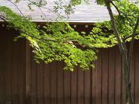 禅寺の内外部で涼を感じて・・・・。 - 一場の写真 / 足立区リフォーム館・頑張る会社ブログ