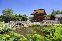 2017 岡崎伊賀八幡宮 no2 - さんたの富士山と癒しの射心館