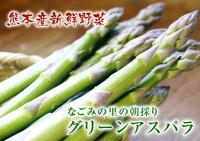 「なごみの里の朝採り『グリーンアスパラ』 立茎を終え大好評発売中です! - FLCパートナーズストア