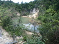 再び池めぐり - 加茂のトンボ (トンボ狂会)