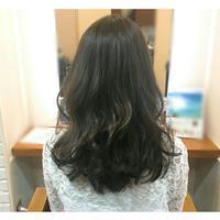 グレーアッシュカラー* - coiffure EMIKA