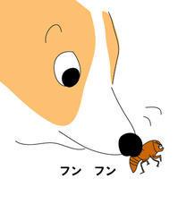 はじめての 蝉 - ボーダーコリー  レンとの奮闘記