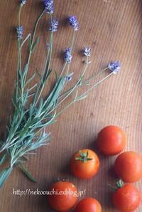 ラベンダーとトマトとアナベル - R* kurashi