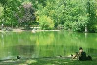 緑豊かな公園でリラックス〜ウィーン市立公園 - Tortelicious Cake Salon