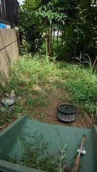 道路側の草取り - うちの庭の備忘録 green's garden