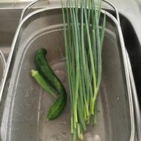 微量支給のお庭野菜 - HAMAsumi-Life