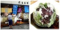 東京甘味処めぐり あんみつ&かき氷編 その3 (追加) - nazunaニッキ