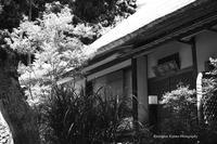 北鎌倉 浄智寺の佇まい - くにちゃん3@撮影散歩