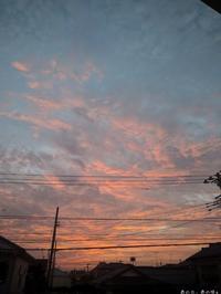 冥王星の夕空と、猫三景。 - あの日、あの味。