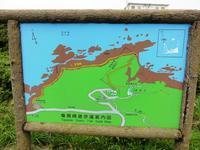 竜飛崎のニッコウキスゲ - 単身赴任の山歩き