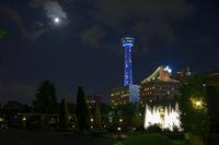 横浜山下公園にて - 春夏秋冬