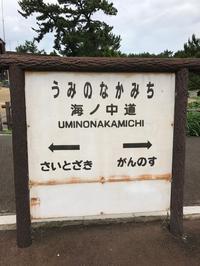 海ノ中道と箱崎 - はなひかり2