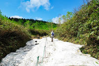 浮島湿原(栂池自然園) - くろちゃんの写真
