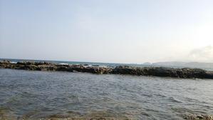 海ダリア園 -