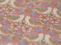 休養 - Risaのフォトログ