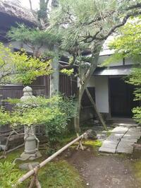 鎌倉でまったり冷めたい抹茶でお庭で一服 - E*N*JOY