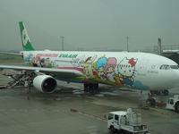 二度目の台湾 ①飛行機とホテル - ひなたぼっこ