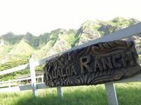 「クアロアランチ 四輪バギー、ジャングルクルーズ(社員旅行3日目)」 - 株式会社エイコー 採用担当者のひとりごと