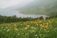 天空の湖`野反湖'へ - からっ風にのって♪