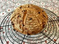 クルミとレーズンのカンパーニュ - カフェ気分なパン教室  ローズのマリ