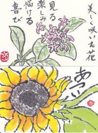 2017年7月 水仙絵手紙教室 ♪♪ - NONKOの絵手紙便り