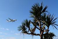 沖縄風 - 南の島の飛行機日記