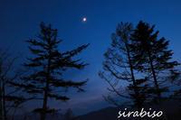夕べの月 - 小さな森の写真館 (a small forest story)