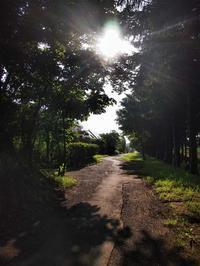 7月14日 今日の写真 - ainosatoブログ02