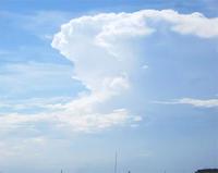 女の子のような雲 - のんびり街さんぽ
