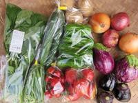 今週の野菜セット7月3週目 - まるみど農園のあれこれ日記