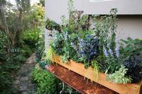 寒色グラデーション - CHIROのお庭しごと