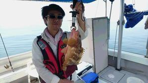 7月15日。テンヤアコウ50㎝出ました。 - 黒潮丸 広島 遊魚船 釣り船       お問い合わせ 090-6411-8882