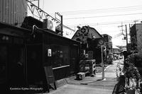 鎌倉 海蔵寺への小径--自由散歩@撮影 - くにちゃん3@撮影散歩