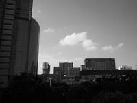 ビルの街 - 節操のない写真館