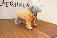 愛犬の洋服がつくれる2つの講座がスタートします ~ラフィンドッグの犬服教室・編物教室~  - ヴォーグ学園東京校ブログ