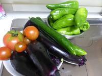 メニューは夏野菜中心 - 飛行機とパグが好きなお母さんの日記