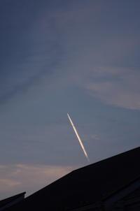 蓮の時 - (鳥撮)ハタ坊:PENTAX k-3、k-5で撮った写真を載せていきますので、ヨロシクですm(_ _)m