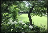 ルヴァン美術館 - 森の扉