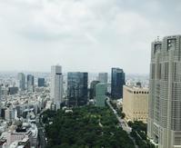 オススメのアフターヌーンティー@パークハイアット東京 - おしゃれな子供写真・家族写真撮影スタジオ H.P.S.tokyo(HOLIDAYS PHOTO SERVICE)