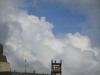 7月30日(日)は、エムズマルシェだよ~☆ - 占い師 鈴木あろはのブログ