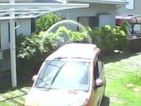 車の輪と妖精 - 森の精観察日記