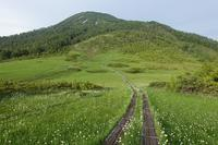 燧ケ岳 2,356m(福島県) - 週末山歩きと・・・